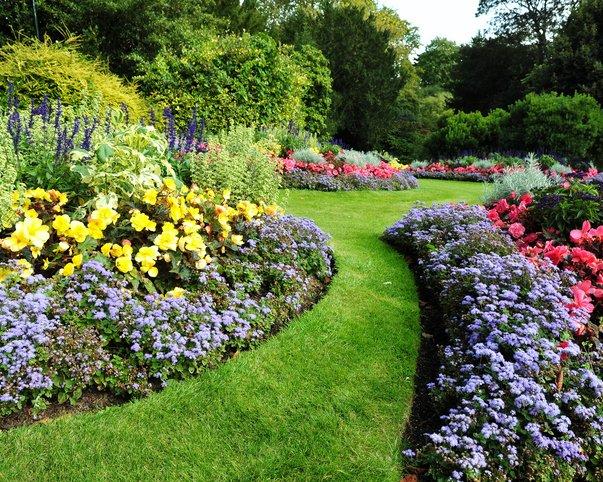 Lawn Experts North Carolina Redmill Landscape Nursery