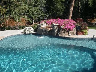 Monarch Pools Inc Denver Co Gallery