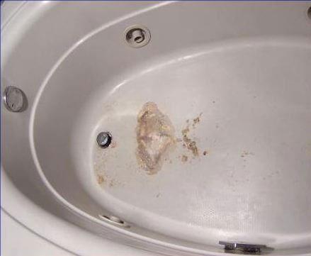 Restorative Bathtub Reglazing Resurfacing Lowell Ma