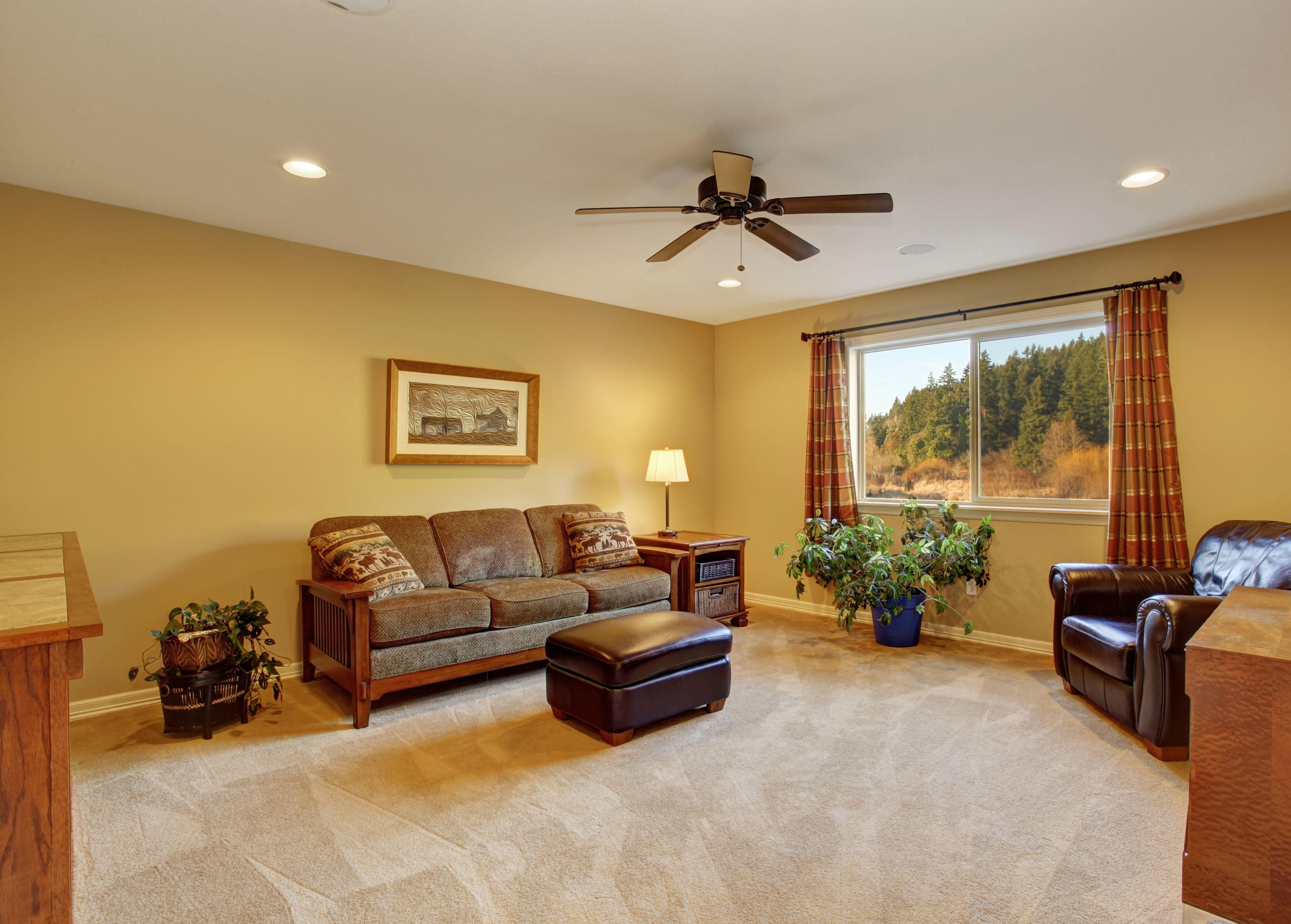Cleaned Capet in Living Room - Carpet - Santa Maria, CA