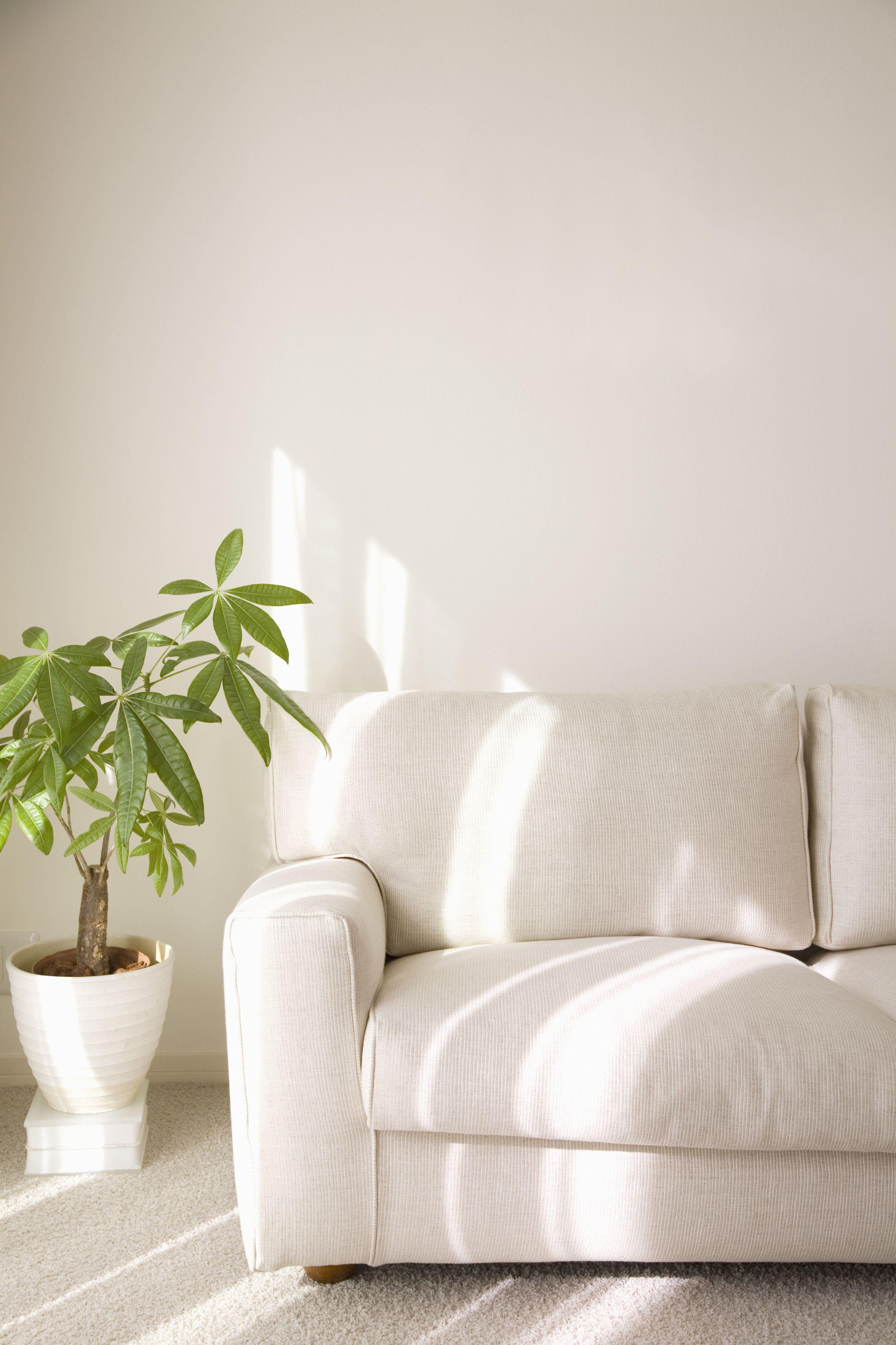 Sofa - Upholstery - Santa Maria, CA