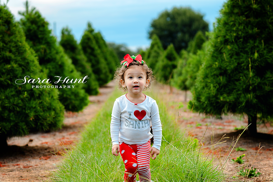 CHRISTMAS TREE FARM SESSION {PEARLAND HOUSTON AREA CHILD