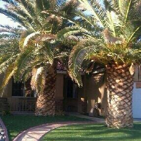 Residential And Commercial Landscaping Las Vegas