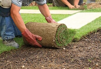 Man Laying Sod on the Ground — Sodding Installations in Oklahoma City, OK