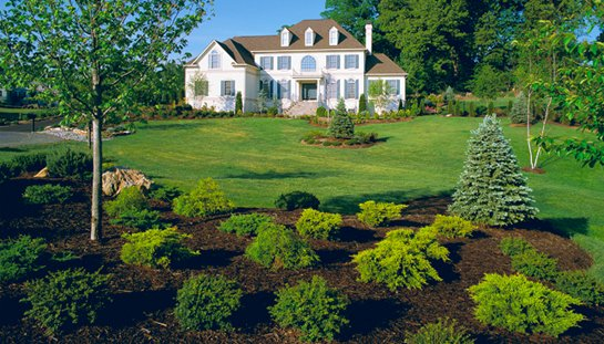 Home Sunburst Nursery And Landscape Spartanburg South Carolina