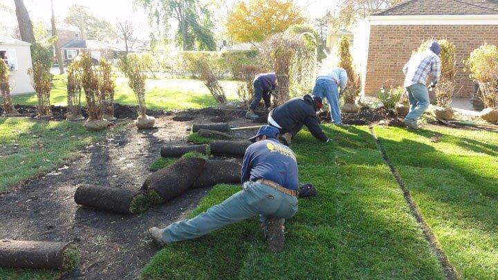 Laying Sod - in Arlington Heights, IL - Landscaping-Arlington Heights, IL-J.B. Block Enterprises Inc
