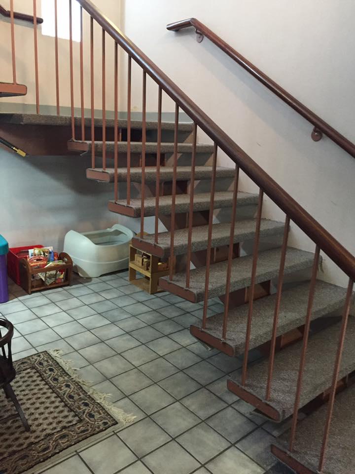 Carpet Stain Removal Elsmere De Delaware Rug Company