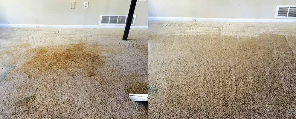 Before Amp After Carpet Cleaning Centennial Co