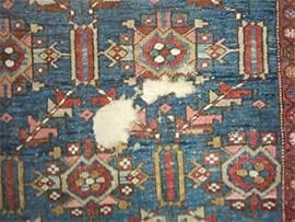 Moth Infestations In Oriental Rugs
