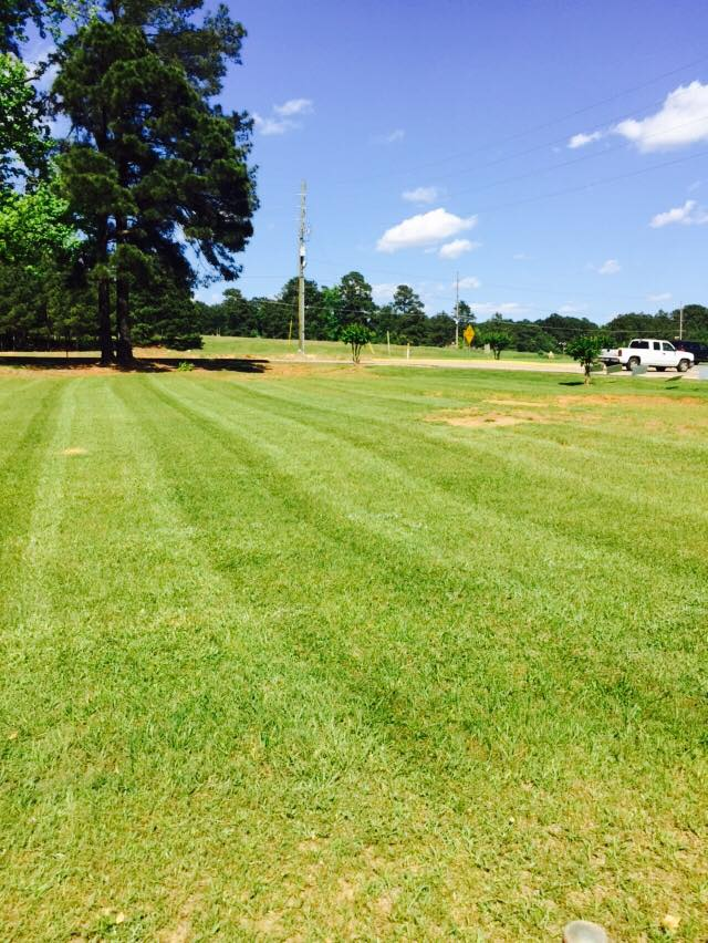 Affordable Turf Management Ruston La Southern