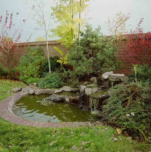 Pond Installation Albuquerque Nm Steve Shelly Landscapes