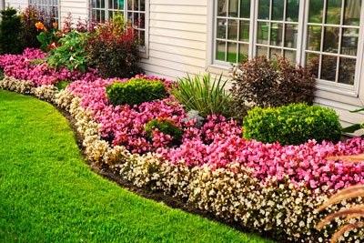 5 Landscape Solutions for Poor Yard Drainage
