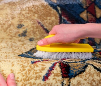 Build Up Dirt Out Cleaning Carpet Using Brush In Twin Falls Id