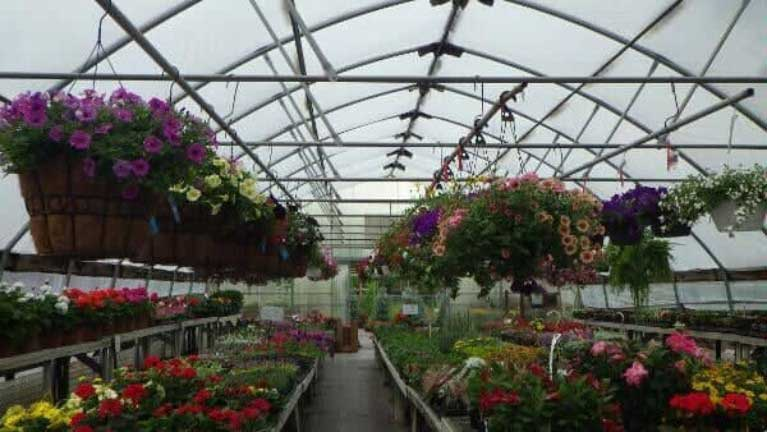 Landscape Design Advice - Belleville, IL - Dintelmann's ...