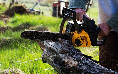 Landscape And Tree Experts Pittsburgh Pa A Landscape Design Tree Service