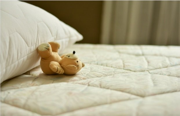 The Facts Behind 8 Common Bed Bug Myths