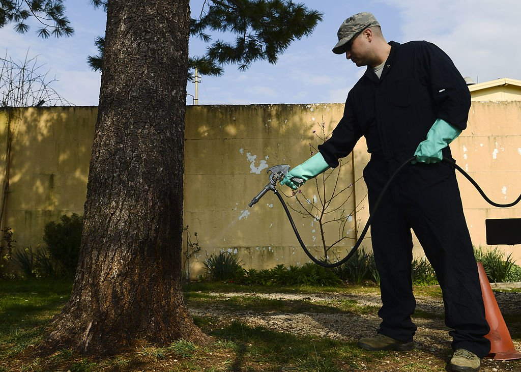 How To Choose A Pest Control Company In 6 Easy Steps