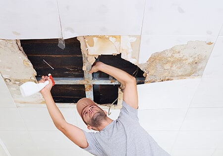 Man Cleaning Mold On Ceiling U2014 Remodeling Contractor In Denver, CO