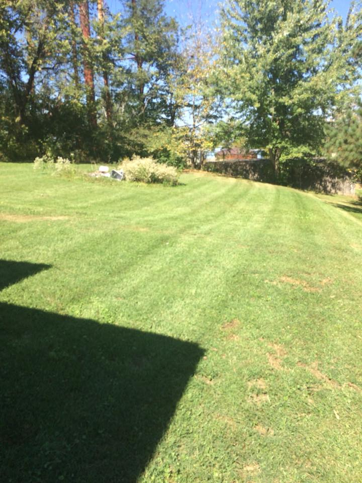 Green Grass Landscape — Landscaping in Clarksville, TN - Landscape & Lawn Care Clarksville, TN Logans Lawn Care & Landscaping