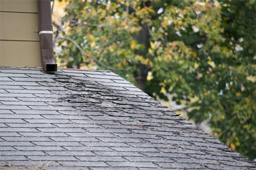 How To Inspect A Roof For Leaks