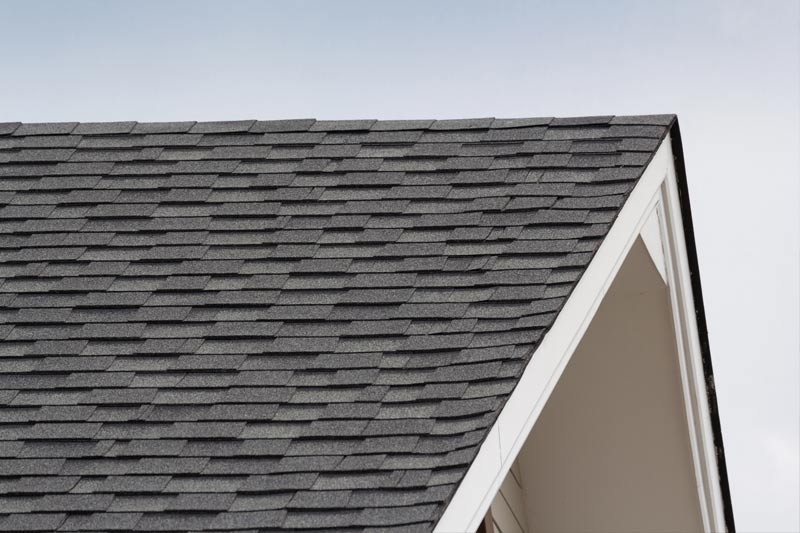 Roofing Services Newport Pa Hominy Ridge Roofing Builder