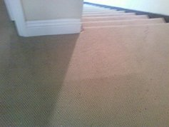 Carpet Repair Mission Viejo Ca The Carpet Doctor
