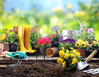 Gardening Tools U2014 Greenhouse In Madison, AL
