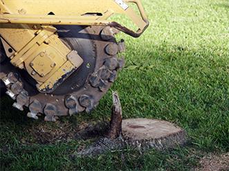 Land Clearing - Onondaga & Cayuga County, NY - Dart Tree Service