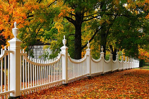 Steps for Planning a Gorgeous Garden Fence