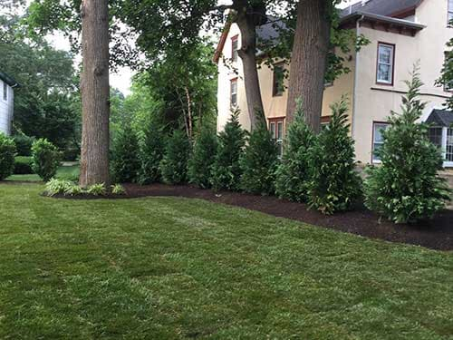 Landscape Photo 4 — Landscape Design in Edison, NJ - Gallery Of Our Work_Edison NJ_D And S Landscaping Inc