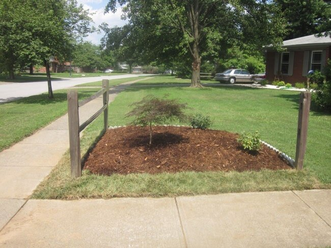Residential Mowing Service — Custom Annual Color Plants in Louisville, KY - Mulch And Soil Service Louisville, KY Wayne's Lawn Service