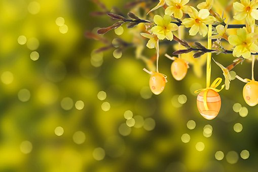 5 bushes and shrubs with yellow blossoms a yellow blooming bush in your yard can make your whole landscape pop but which shrubs and bushes will develop yellow flowers mightylinksfo